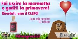 Il Giorno della Marmotta festeggia con 'I Trasgressivi'!