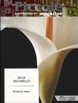 Evviva la Neve di Delia Vaccarello