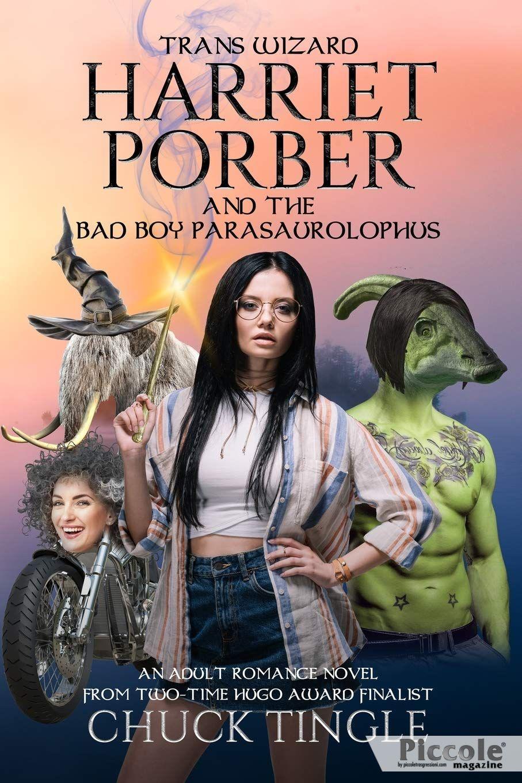 Foto copertina del libro harriet porber