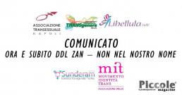 Comunicato Associazioni Transgender: 'ORA E SUBITO DDL ZAN – NON NEL NOSTRO NOME'