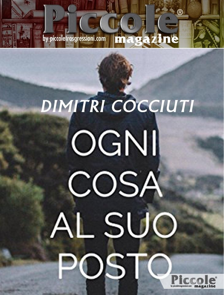 Foto copertina del libro Ogni cosa al suo posto di Dimitri Cocciuti