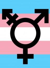 Giornata della Visibilità Transgender 2019