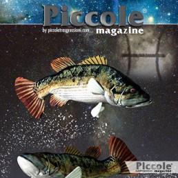 L'uomo dei pesci: carattere, lavoro, famiglia